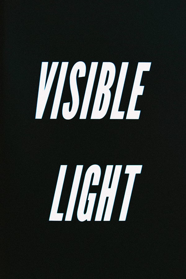 Image of Visible Light book by Brian Vu