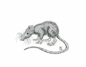 Image of DRAWLLOWEEN Day 26 Original: RAT