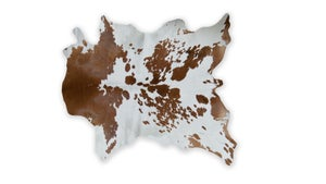Image of 676685024169 S&P BROWN&WHITE Mini Hides