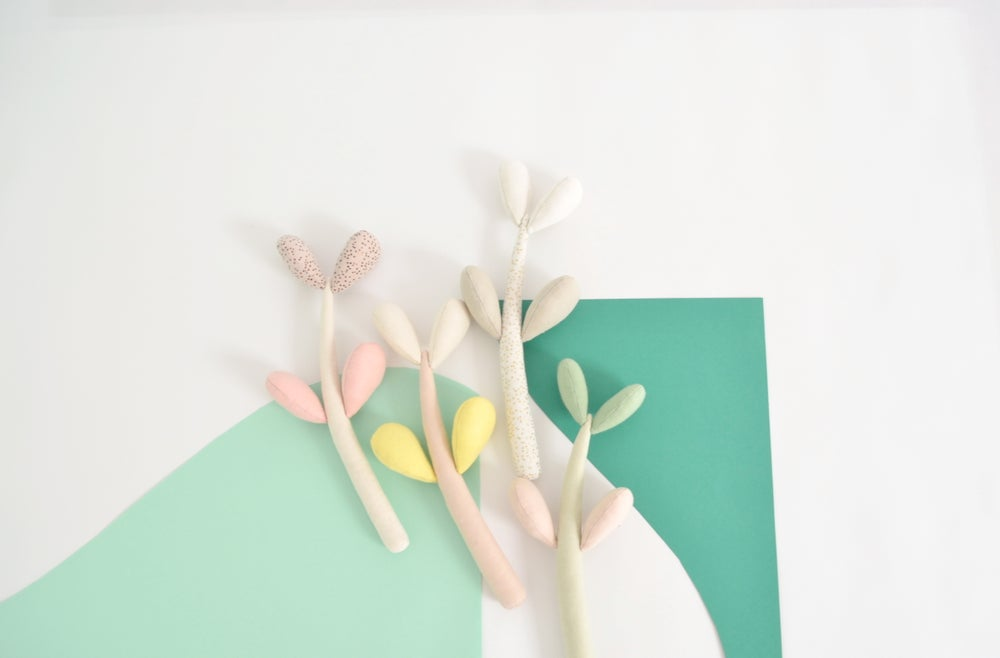 Image of Little jade plant a/w '15