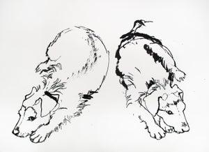 Image of Double dog