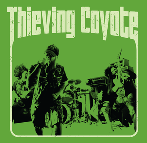 Image of Thieving Coyote