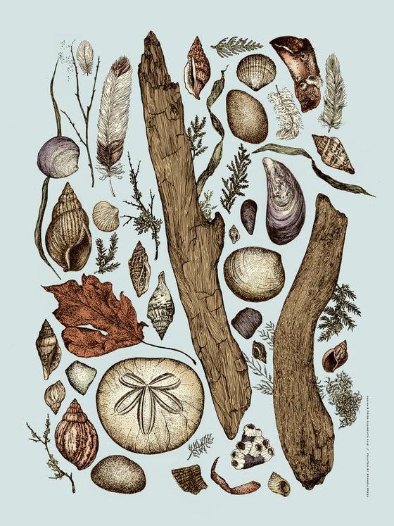 Image of Seaside Bouquet Art Print
