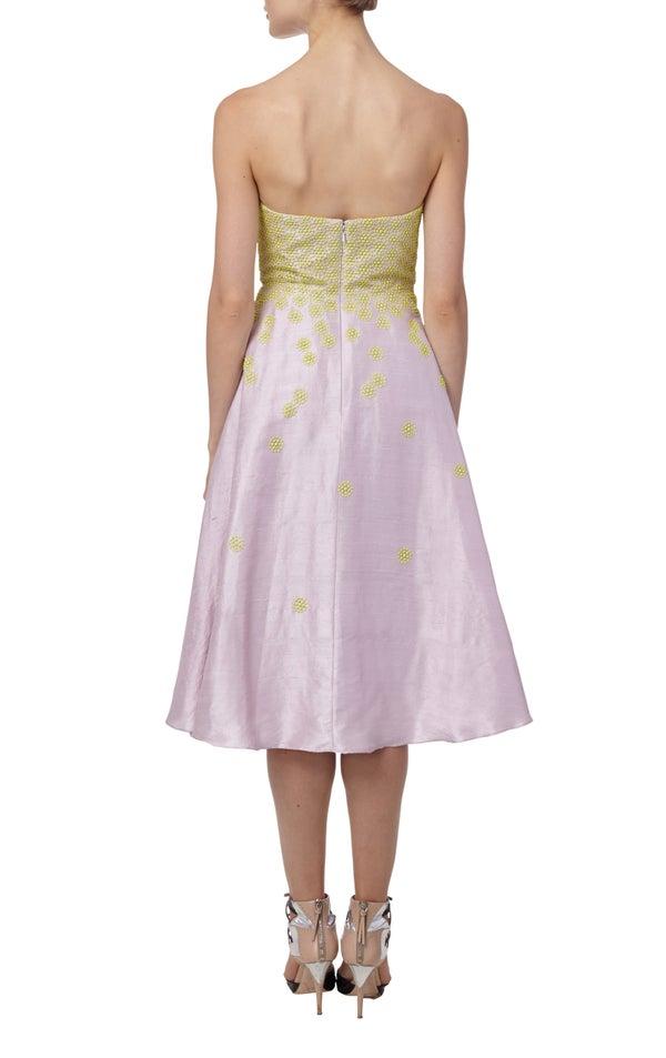 Rosewood Dress $990 - Melissa Bui