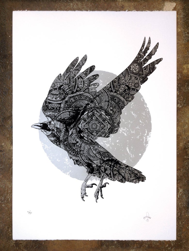 Image of White Crow of Winter