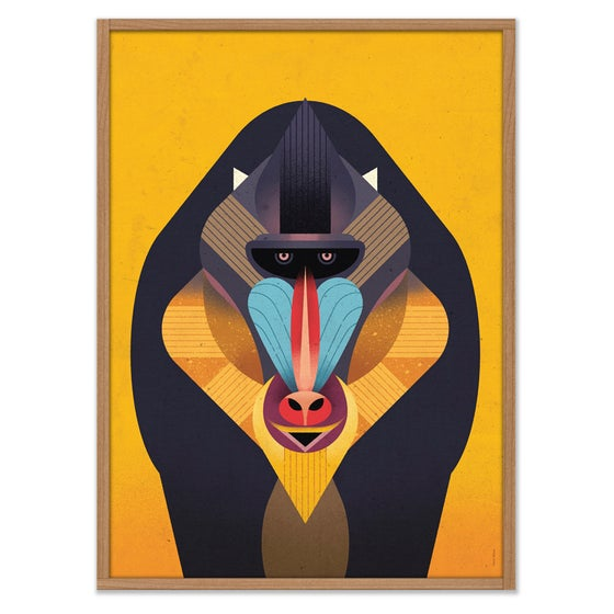 Image of Mandrill