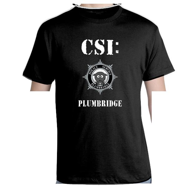 Image of CSI Plumbridge