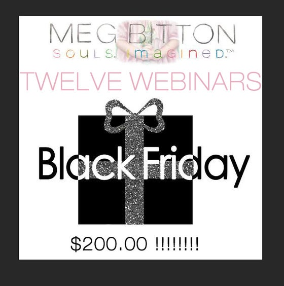 Image of BLACK FRIDAY SPECIAL-TWELVE WEBINARS IN 2016