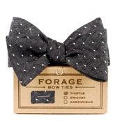 Image of black dot {bow tie}