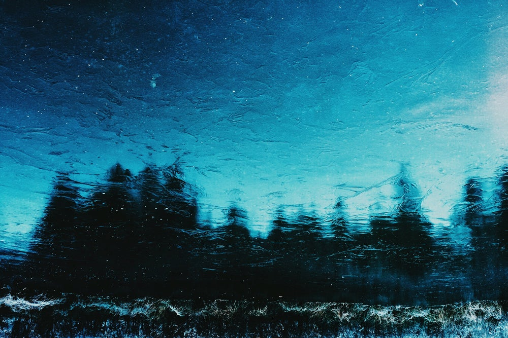 Image of Frozen Morning photograph print