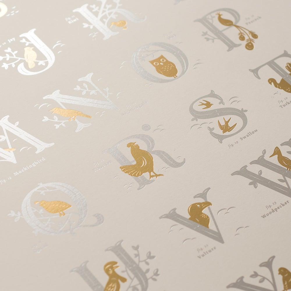 Image of Alphabirds Foil