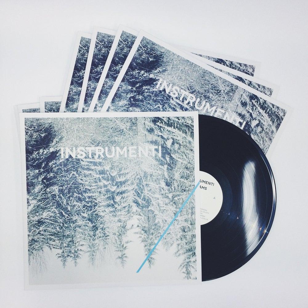 Image of IEKAMS vinyl (2014)
