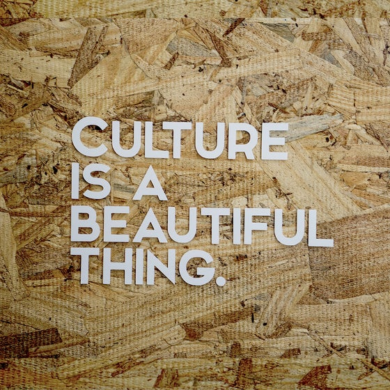 Image of Culture Vinyl