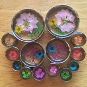 "Real Pressed Flower Plugs (sizes 0g-2"")"
