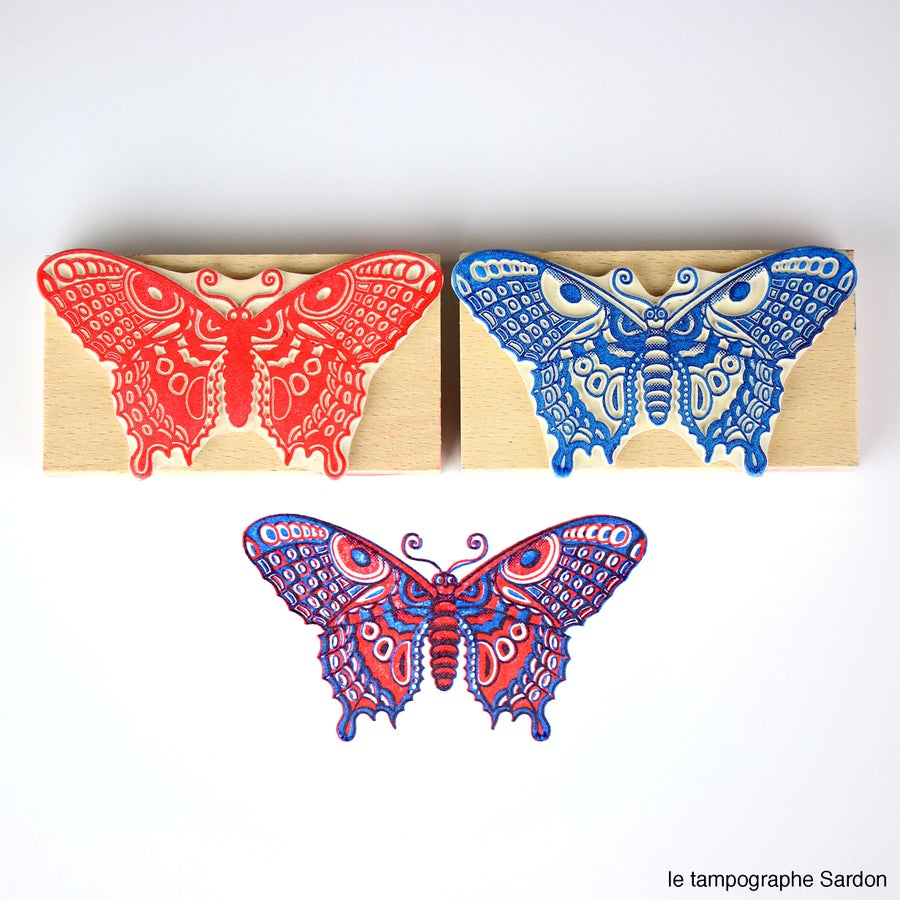 Image of Papillon - Butterfly