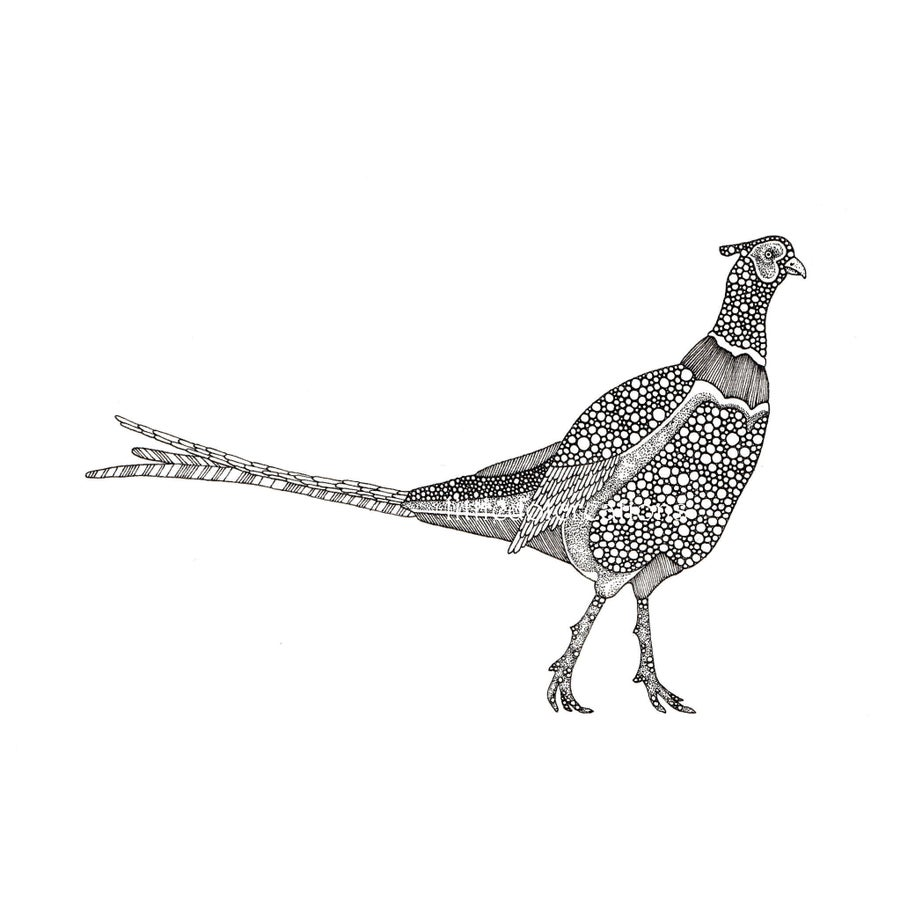 Image of The Pleasantries of Pheasants