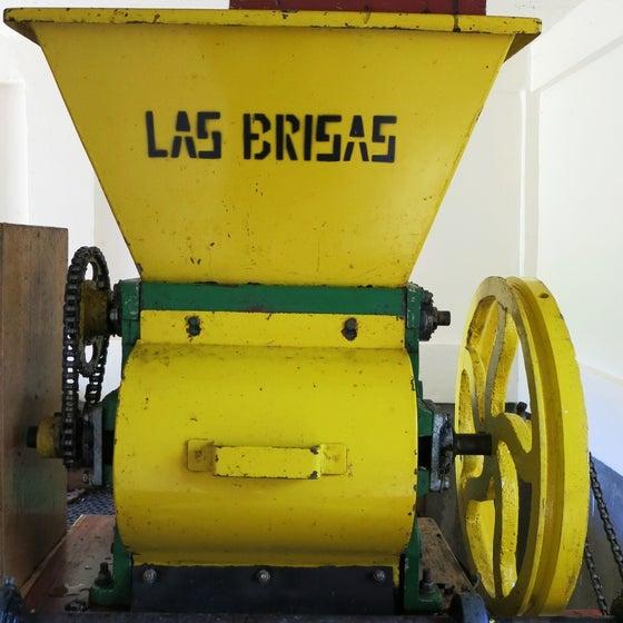Image of Nicaragua Finca Las Brisas
