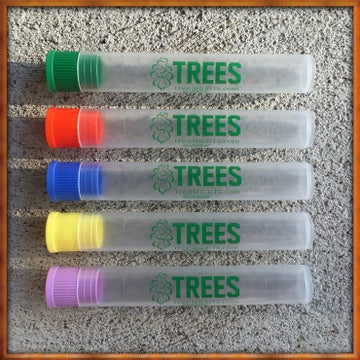 Image of Tree Shurts x Doob Tubes
