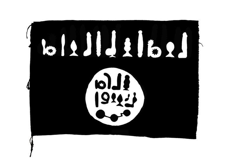 Image of Signed Print 'Dildosis Flag' Ltd Ed of 75