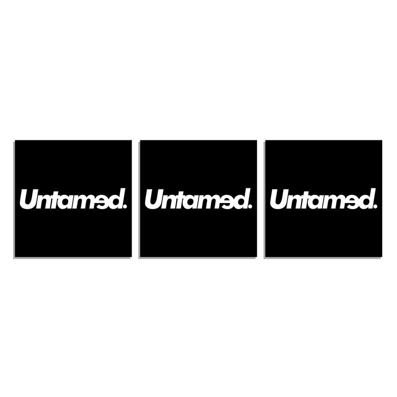 Image of Untamed - Square Stickers