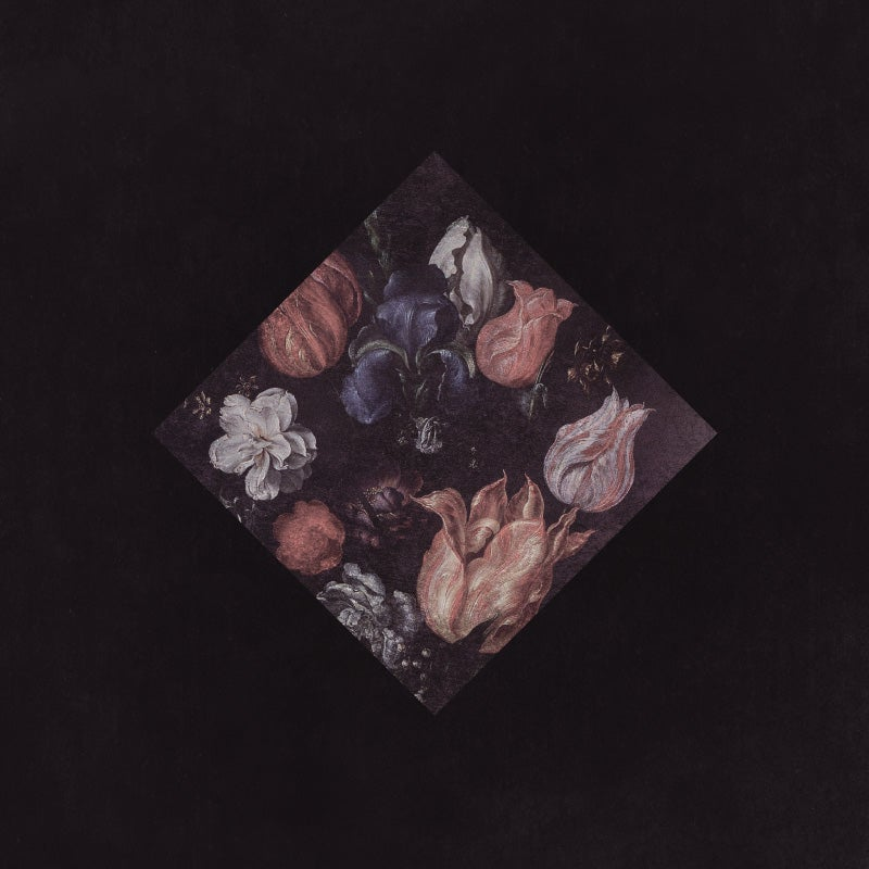 Image of Monochrome Noise Love LP Repress