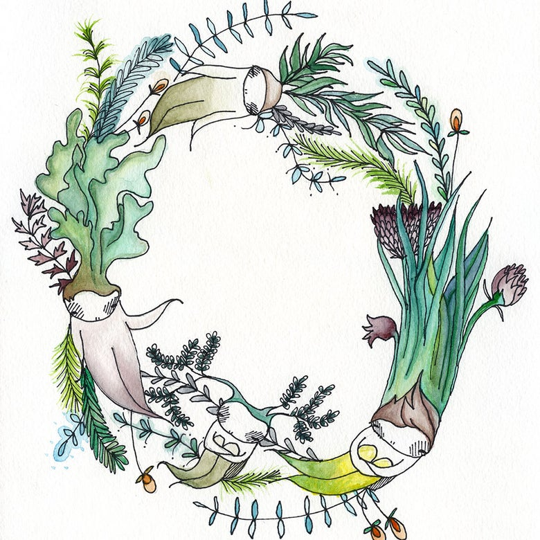 Image of 'Ring around the Rosemary' Fine art print