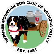 Image of Membership Renewal