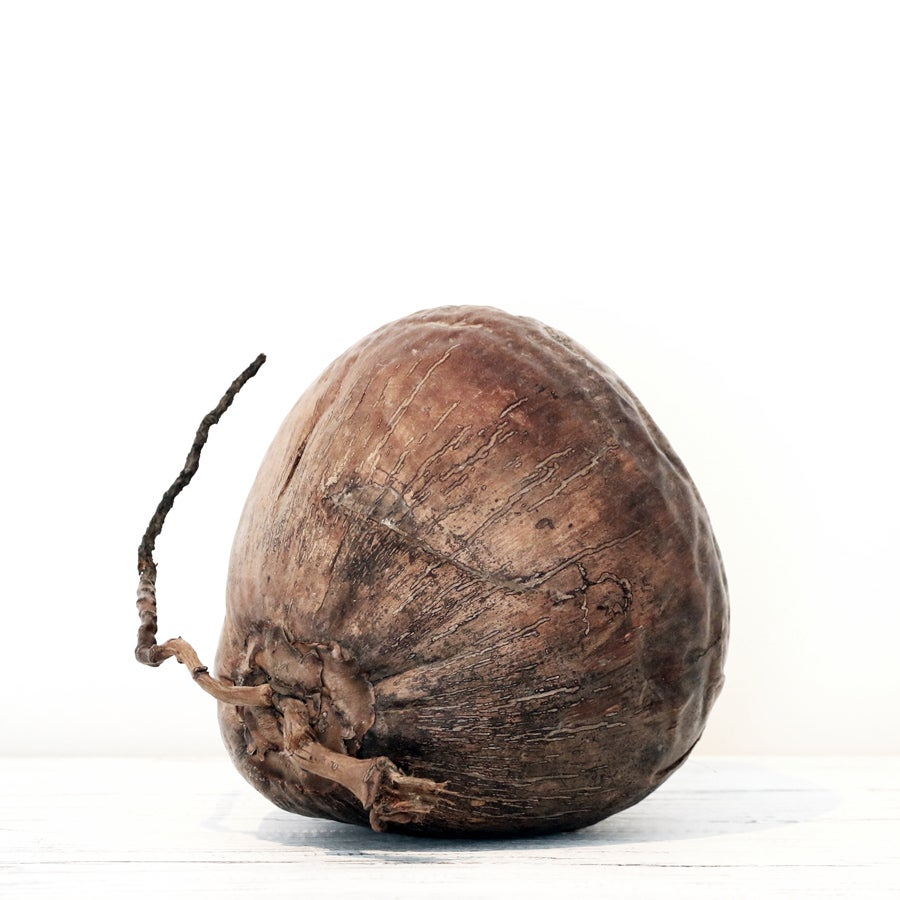 Image of Natural Coconut Decoration