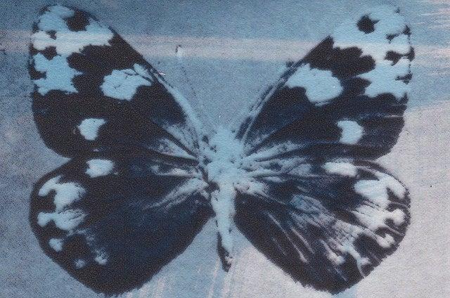 Image of blue eighteen: Chemiefaserwerk