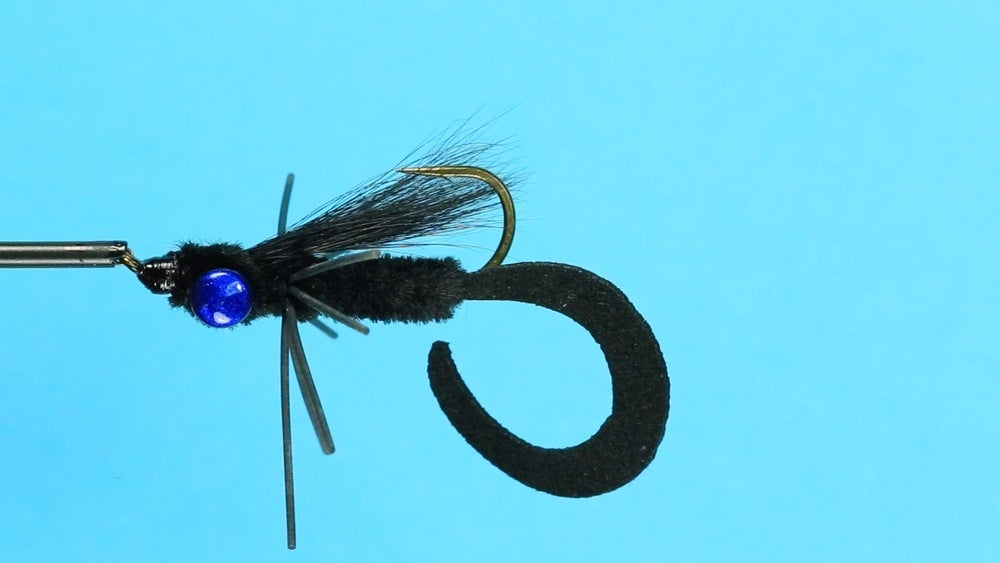 Image of Curly Tail Critter Bug