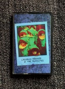 Image of The Deadnotes / Casually Dressed Split TAPE