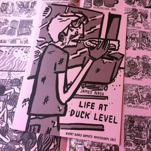 Image of Life at Duck Level: Diary Comics, Amsterdam 2013.