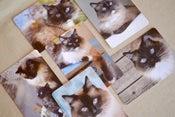 Image of  Set of Six Charlene Butterbean Postcards
