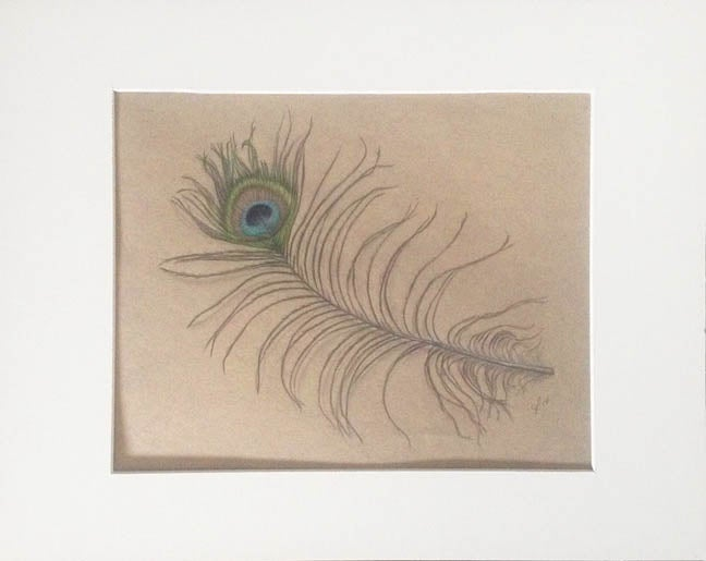 Cate Rangel Peacock Feather Study Original Matted
