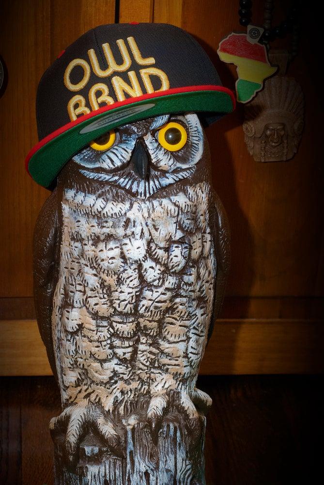 "Image of ""OWL BRND"", ""THINKIN' CAP"" SNAP BACK"