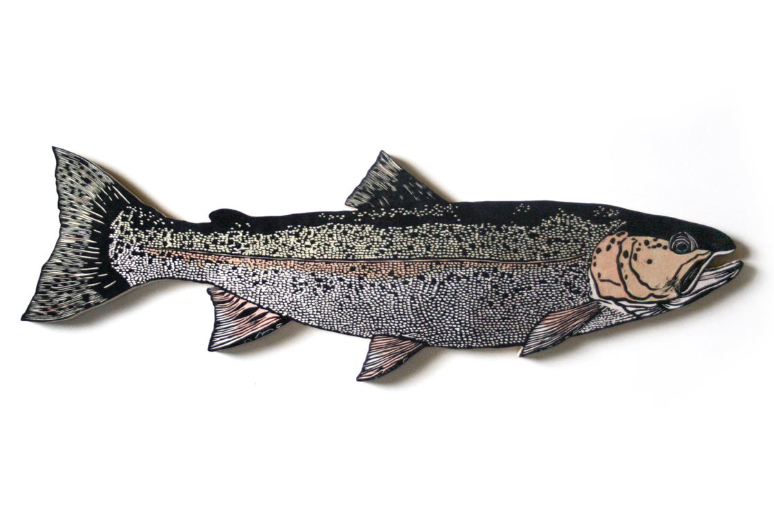 Image of Kroll's Rainbow Trout