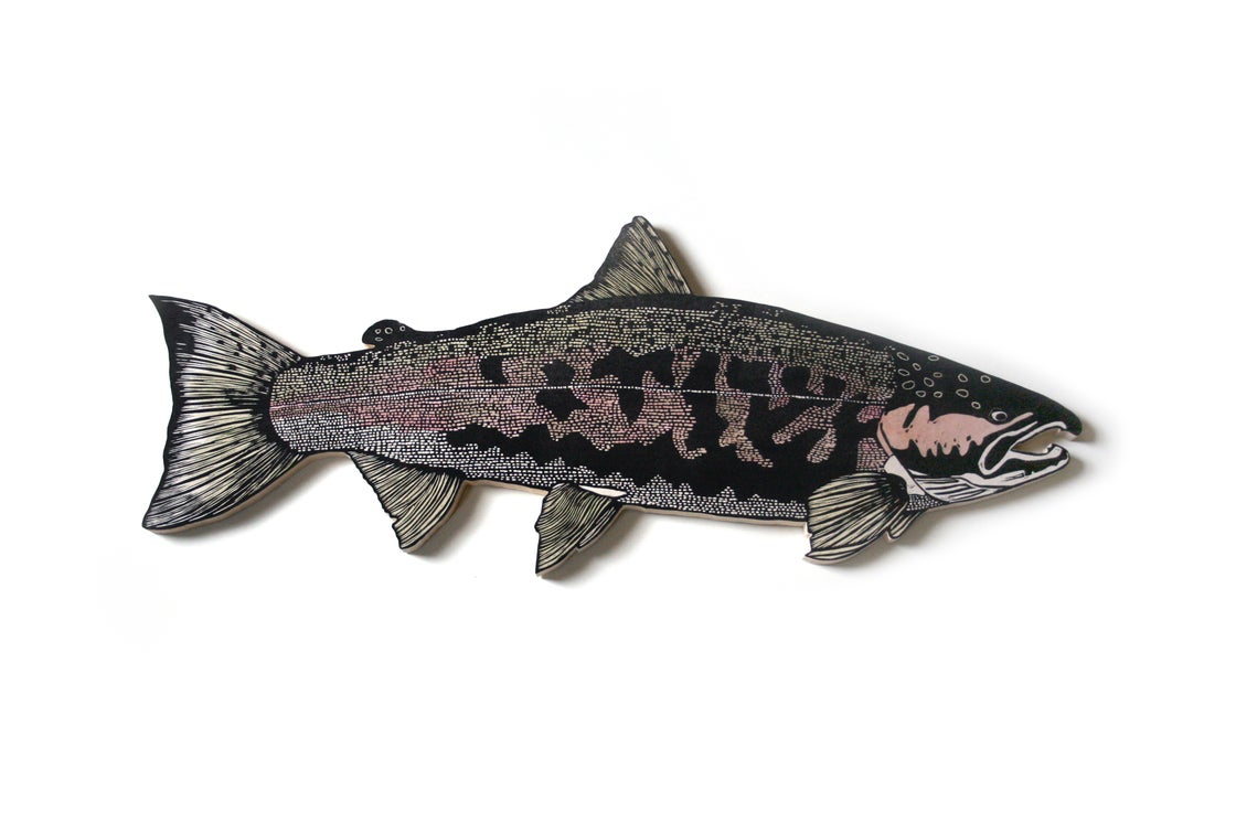 Image of Campbell's Coho Salmon
