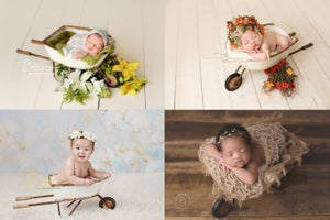 Image of Cream 'n Rust Wheelbarrow - Photography Prop - Newborn Sitter