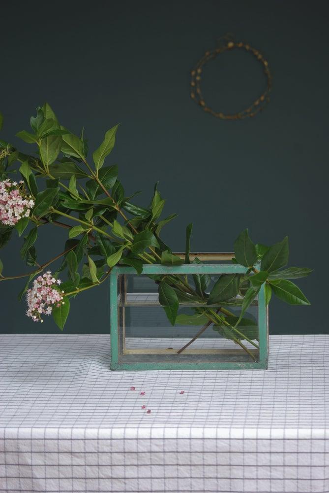 Image of Aquarium ou vase