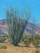 Image of Ocotillo Country