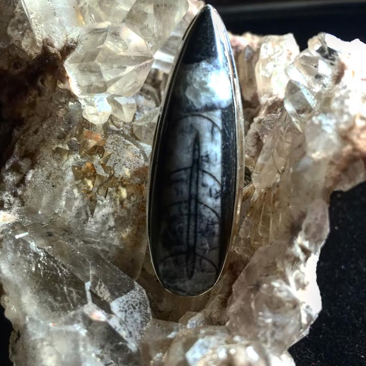 "Image of Orthoceras Fossil Sterling Silver  ""Tap into the magic of the earliest forms of life energy"""