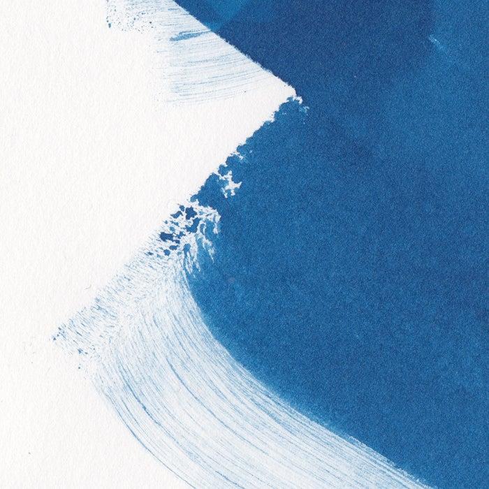 Image of blue twenty: Quasiviri