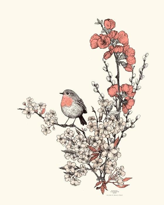 Image of Bird & Blossom Print