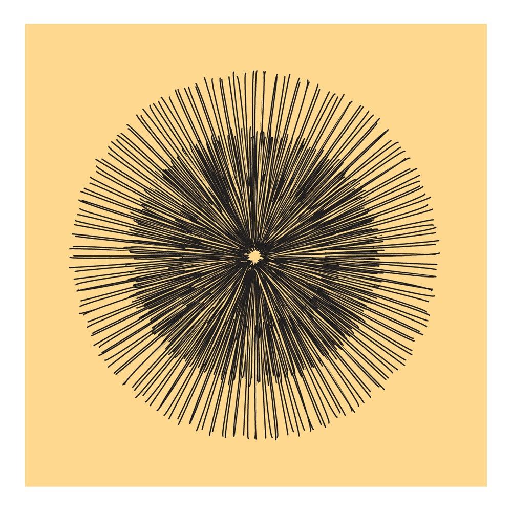 Image of Flowerlines - Taraxacum