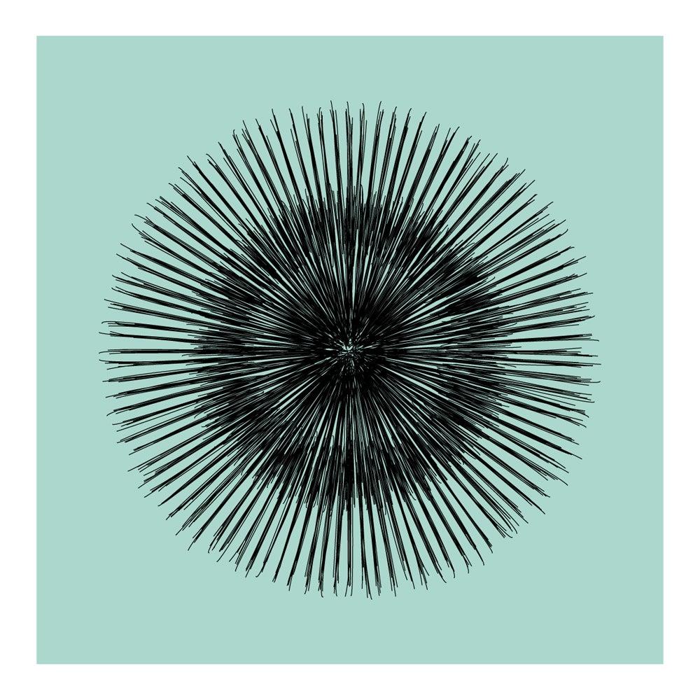 Image of Flowerlines - Gerbera
