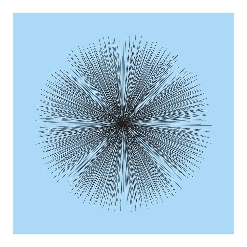 Image of Flowerlines - Centaurea cyanus