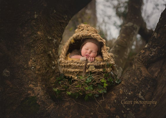 """Image of  Newborn Baby """"Honey Comb"""" BeeHive with Removable Top! Another Woodsy Wonders Original!"""