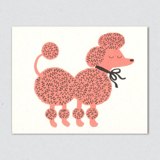 Image of Pink Poodle