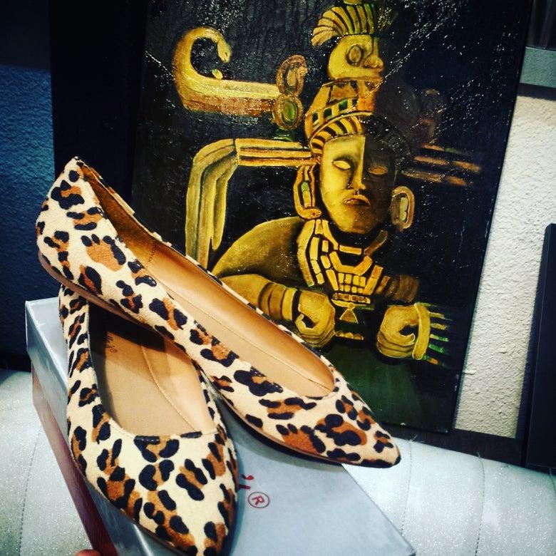 Image of Leopard Flats