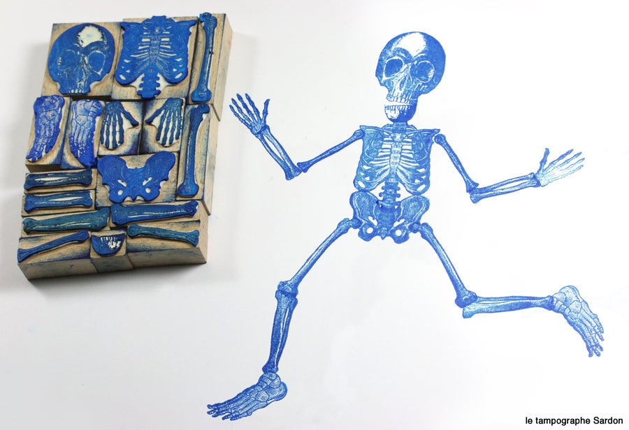Image of Le Grand Squelette - Skeleton